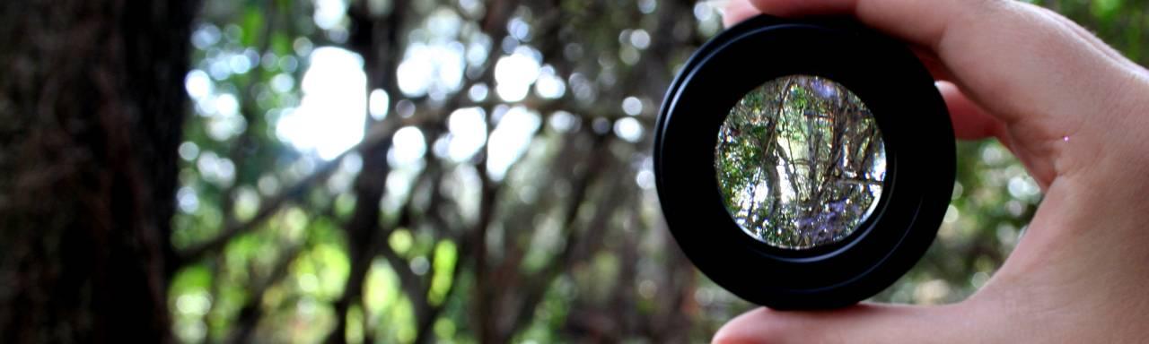 Dagmar Cassiers – Ihre Lebens Perspektive