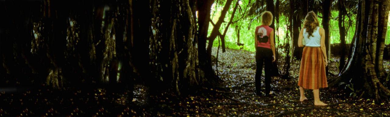 Der goldene Weg aus dem Beziehungsdschungel