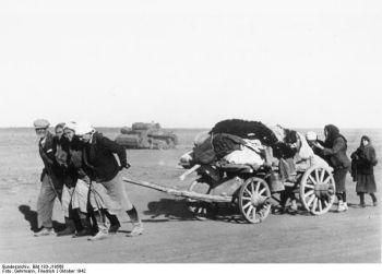 Bei Stalingrad, russische Flüchtlinge
